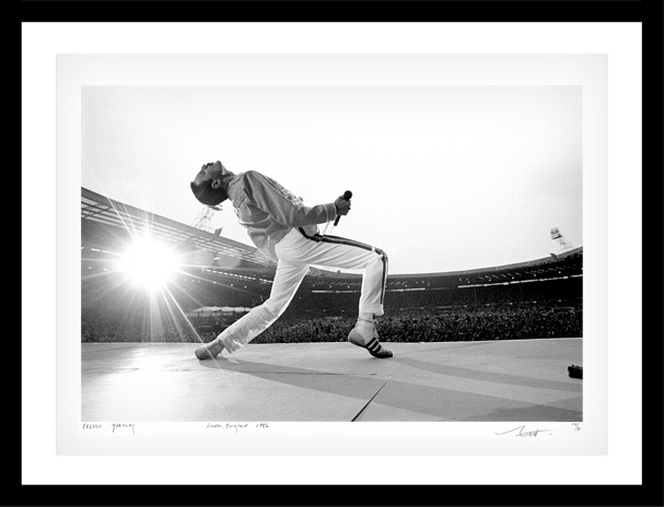 fine_art_print_freddie_mercury_collection